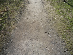 The newly surfaced path peters out and becomes slightly rougher, but in good condition nonetheless.
