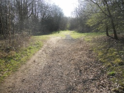 Road planings have been used on areas of the trail that are liable to become muddy. Wheelchair users may require assistance through these sections.
