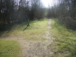 A crossroads. Left: a longer route. Right: a shortcut over rough ground. Go straight-on to follow the figure-of-eight trail.