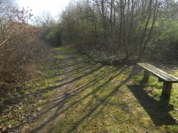 Another bench, located approximately 200m from the last one.
