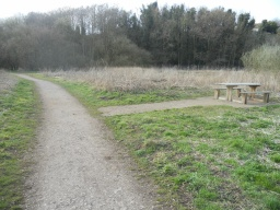 A picnic bench is located off the path.