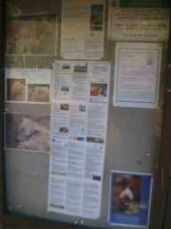 There is a lot of information available on the large board by the entrance.