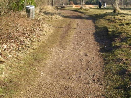 This short 50m spur has an uneven and slightly muddy surface.