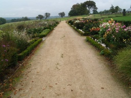 The paths in the gardens are firm and wide enough for two people to walk side by side.