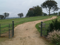 Continue through the gates at the end of the John Arnold Garden and follow the path up the hill.