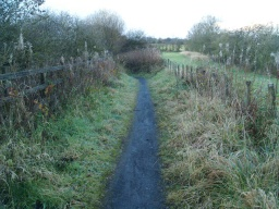 The path down from Lundin Road is only about 400mm wide.