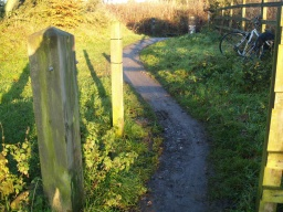 There is a short slope with a gradient of about 16% (1:6) on the mud path to the cycleway.
