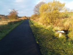 A seat provides good views of the attractive countryside alongside the cycleway.