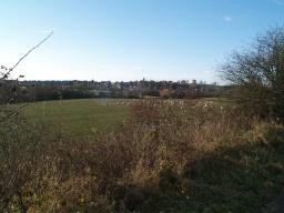 View to Clackmannan
