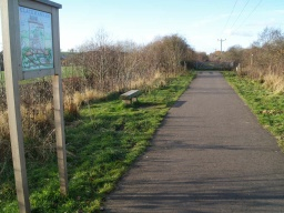 An information sign and bench are close to the point at which this trail leaves the old railway line.
