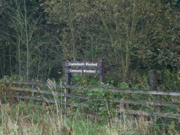 The trail is within the Cowdenbeath-Woodend Community Woodland.