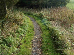 The first part of the path is only about 300mm wide but its surface is firm and stable.
