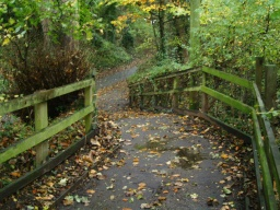 The ramp on this path has a gradient of 17% (1:6) for about 10 metres. With leaves on the surface this may be slippery.